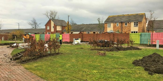 Trees planted at Grace House in first phase of new garden build